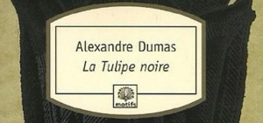 Tulipe Noire